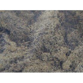 Mousse lichen islandais gris 250 grammes - HEKI 3233