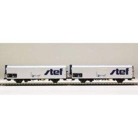 LS Models 30239 - Coffret de 2 wagons lbbghs nouveau logo STEF décentré SNCF époque V - HO