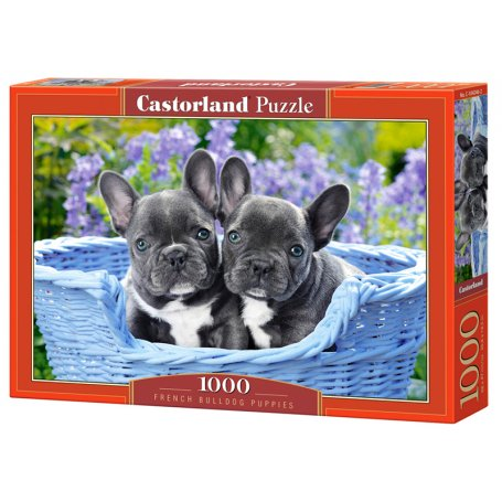 French Bulldog Puppies - Puzzle 1000 pièces - CASTORLAND