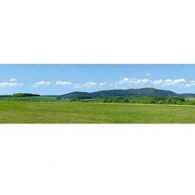 Fond de décor paysage en été - FALLER 180505